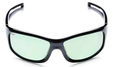Очки Rapala Shiny Black RVG-035A (артикул RVG-035A)